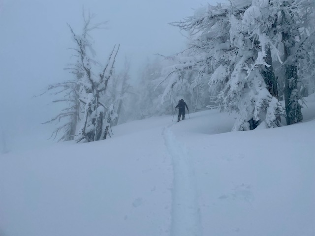 heavy rime on the trees and poor visibility up high