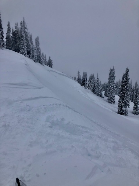 smaller of the 2 avalanches reported appeared to snowmobile triggered